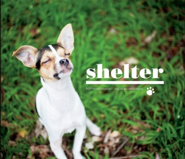 """Shelter\"" - Coffee Table Book"
