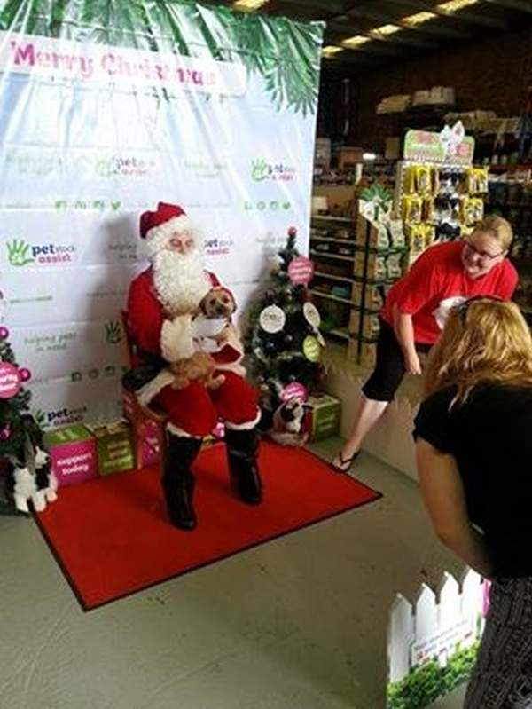 Petstock Santa Photos 2014