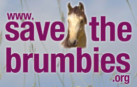 www.savethebrumbies.org